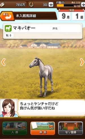 馬体解析3