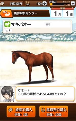 馬体解析4