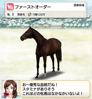 【繁殖牝馬】ファーストオーダー(優)【ダビマス基本配合 ...